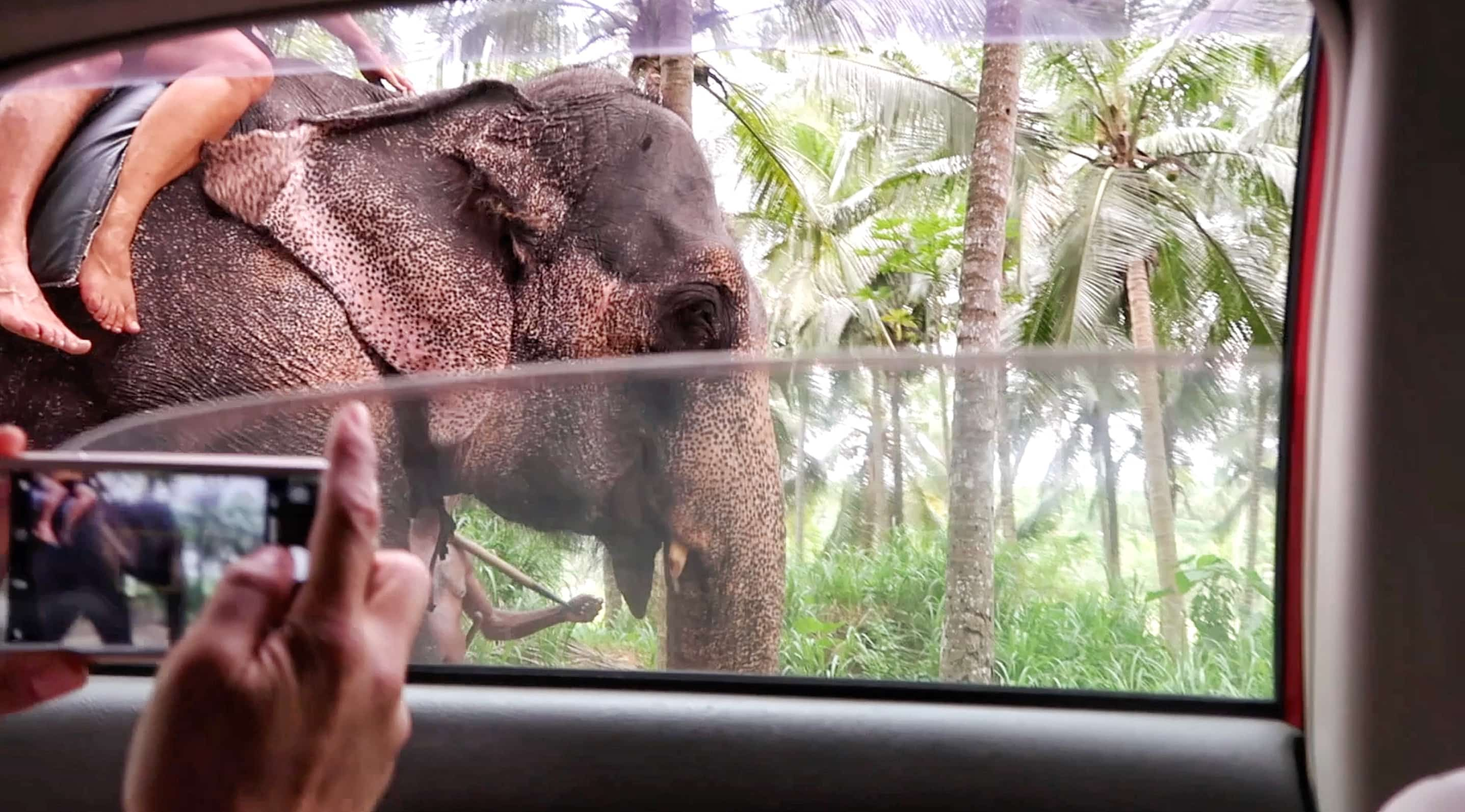 How to Travel to Sri Lanka